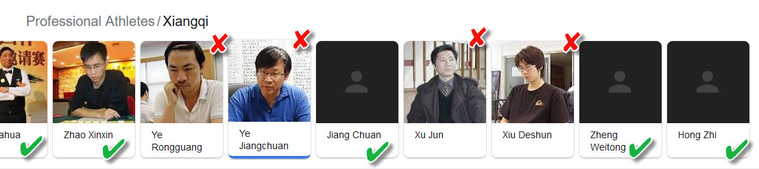 Google Search Mistake for Professional Xiangqi Athletes